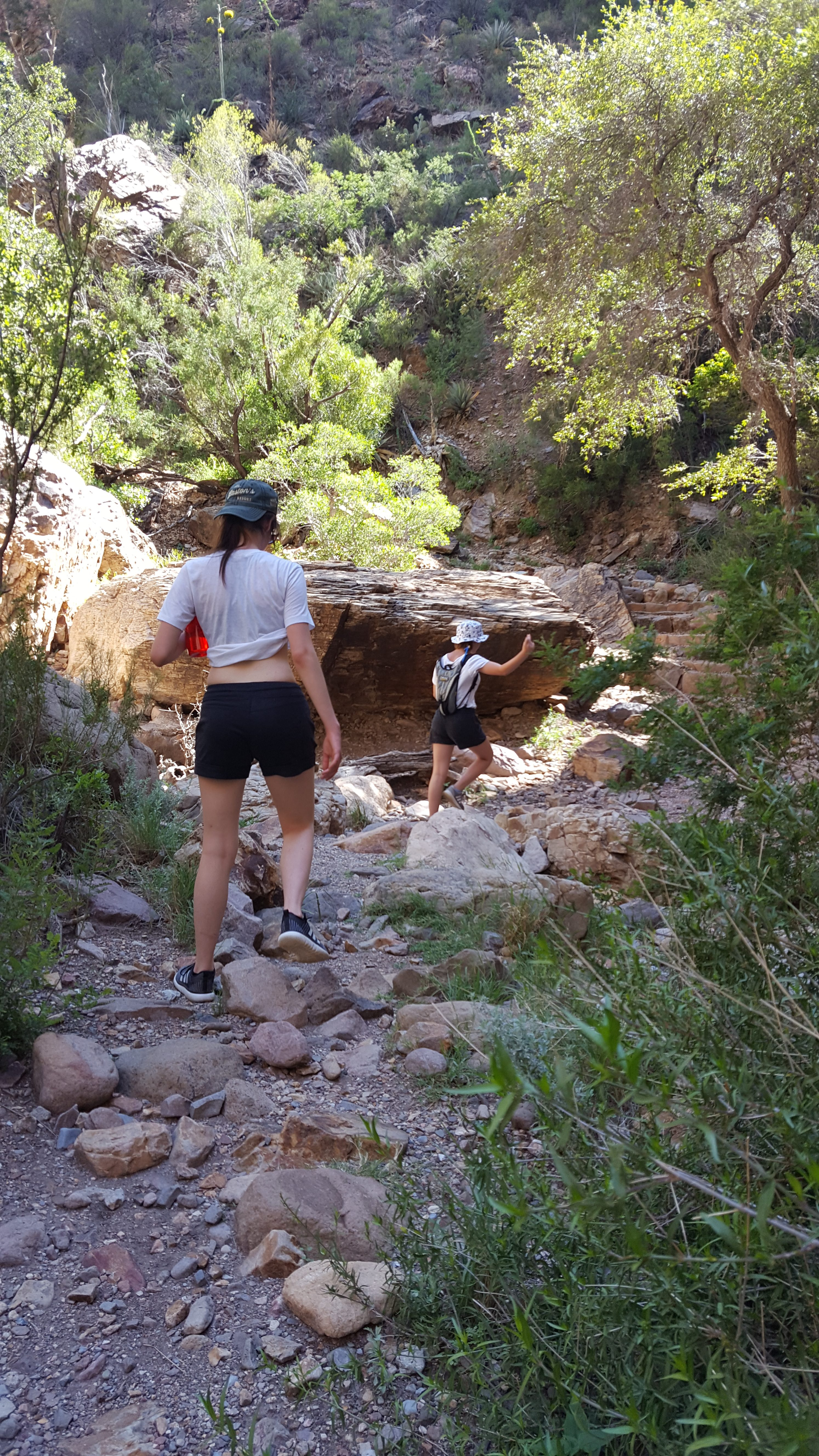 Hiking Big Bend