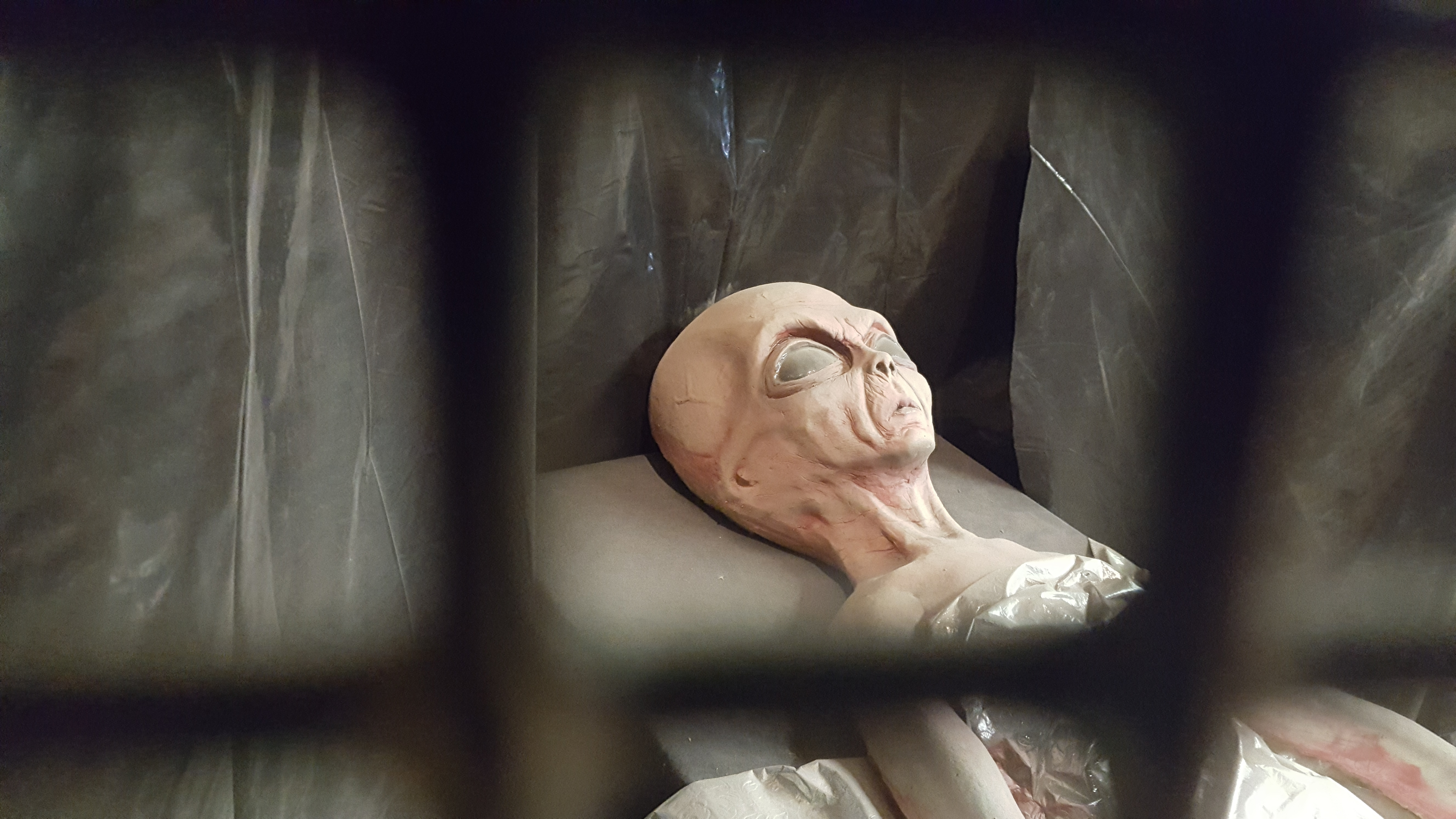 Alien Roswell